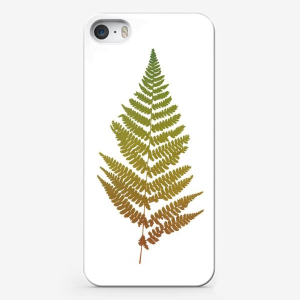 Чехол iPhone «Растение папоротник, природа, гербарий, лес»