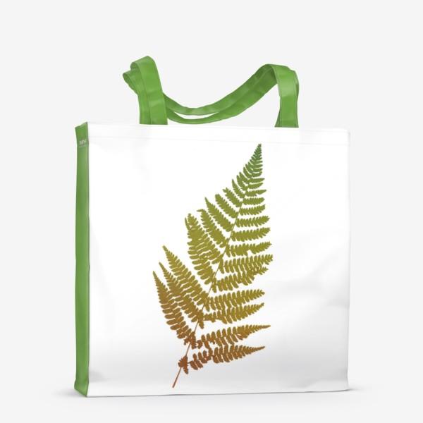Сумка-шоппер «Растение папоротник, природа, гербарий, лес»