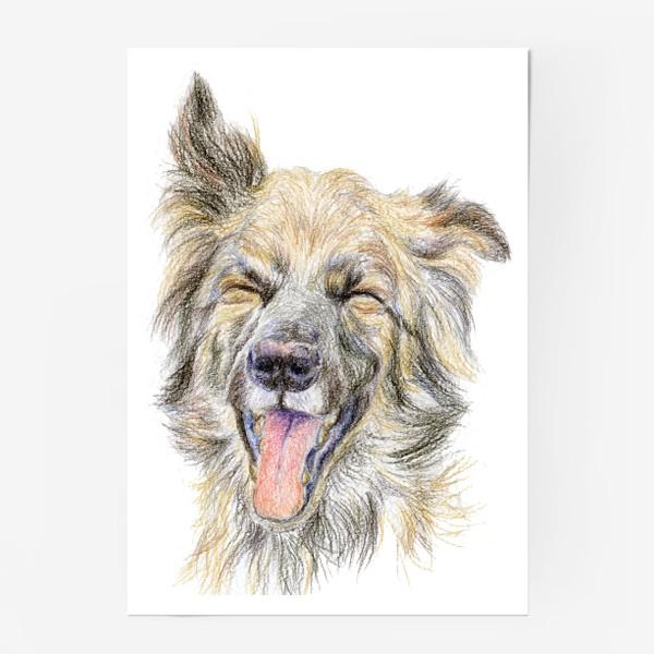 Постер «Собака смеётся »