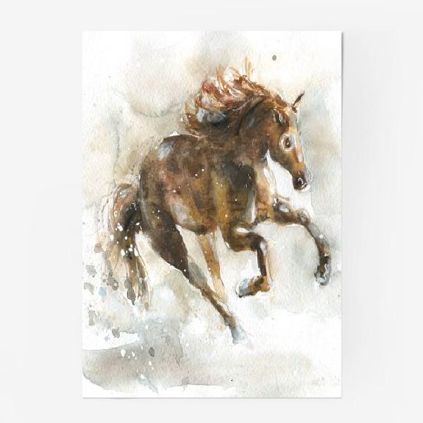Постер «Конь»