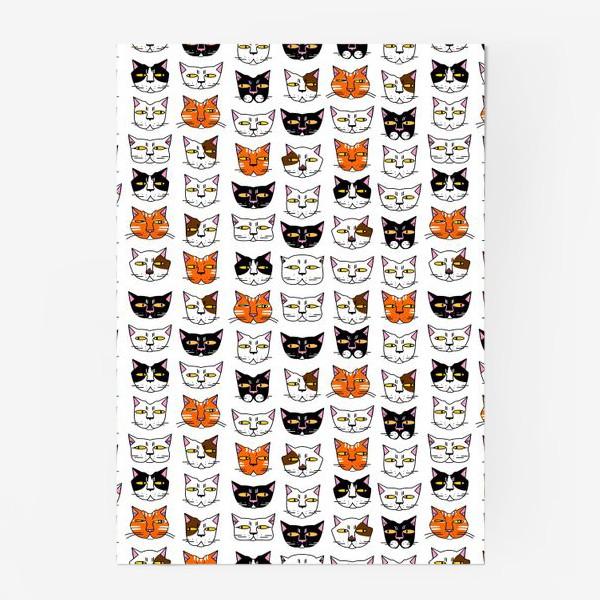 Постер «Кошачьи мордашки»
