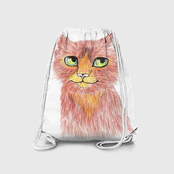 Рюкзак «Огненный кот»