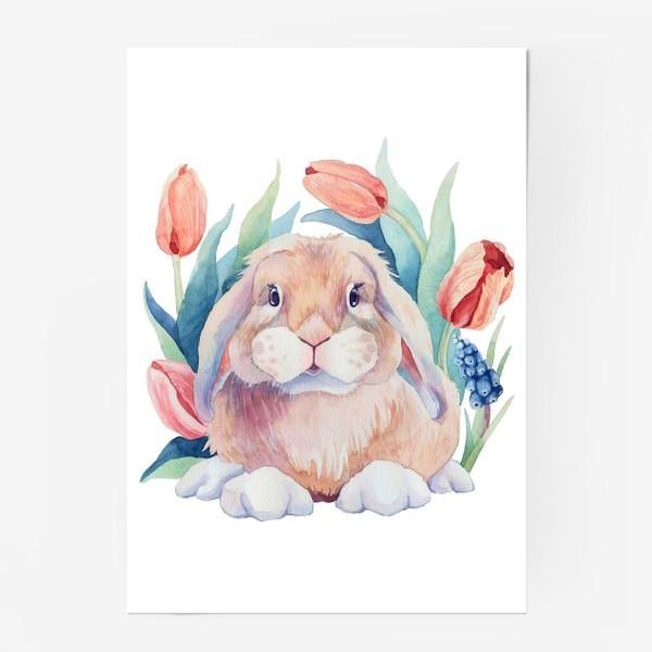 Постер «Зайка в тюльпанах»