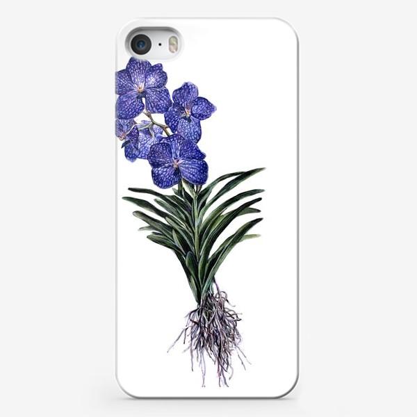 Чехол iPhone «Орхидея Ванда»