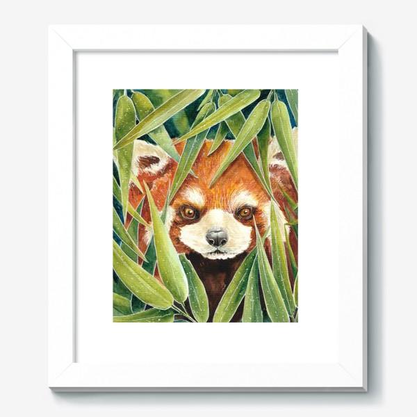 Картина «Красная Панда в листьях бамбука»