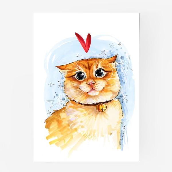 Постер «Рыжий кот удивлен»