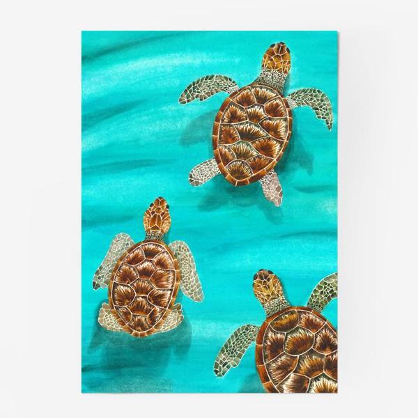 Постер «Плывущие морские черепахи»