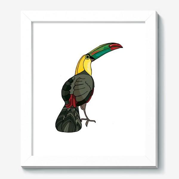 Картина «Птица тукан»