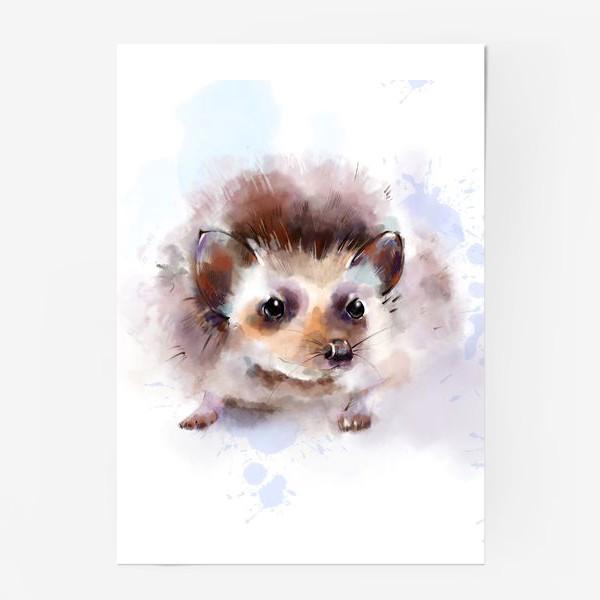 Постер «Милый ежик»