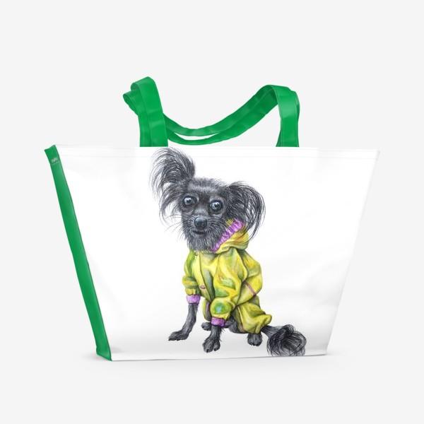 Пляжная сумка «Чихуахуа в одежде»