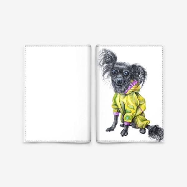 Обложка для паспорта «Чихуахуа в одежде»