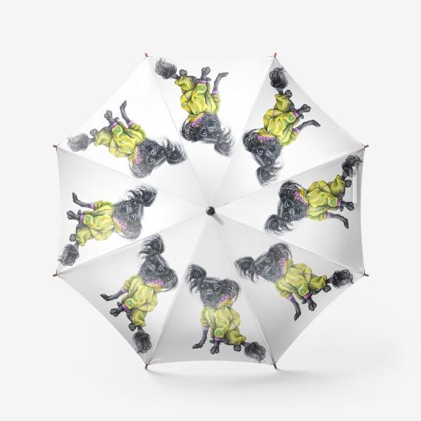 Зонт «Чихуахуа в одежде»