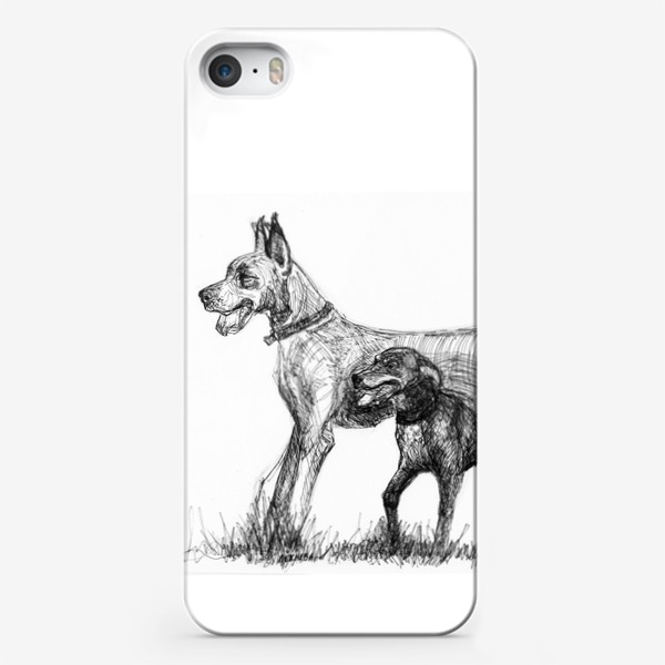Чехол iPhone «Дог и курцхаар»