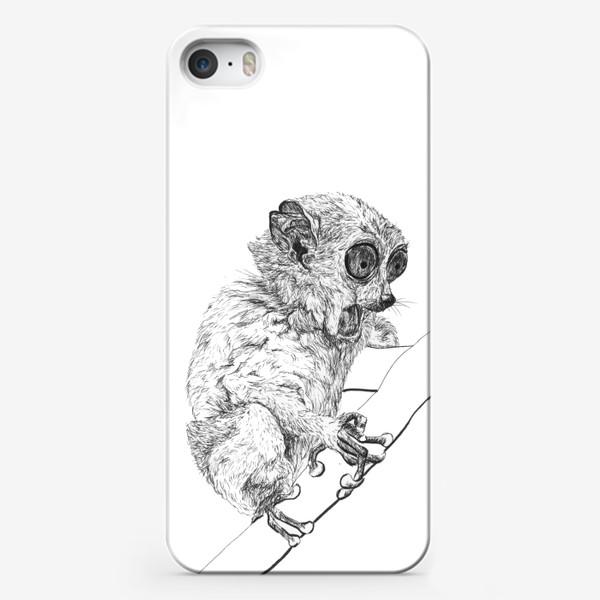 Чехол iPhone «Толстый лори удивлен»