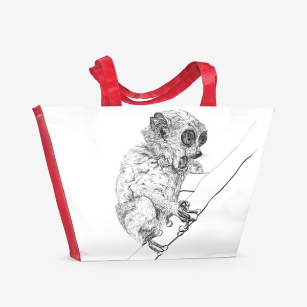 Пляжная сумка «Толстый лори удивлен»