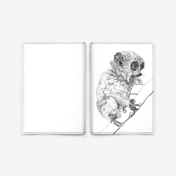 Обложка для паспорта «Толстый лори удивлен»