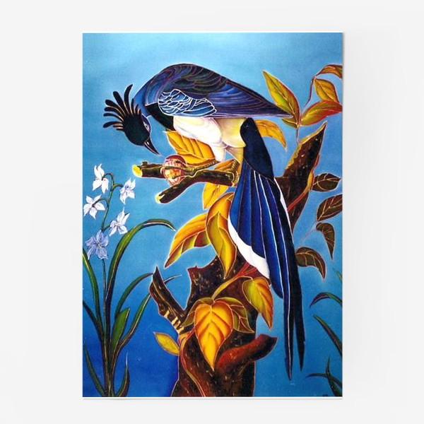 Постер «синяя птица »