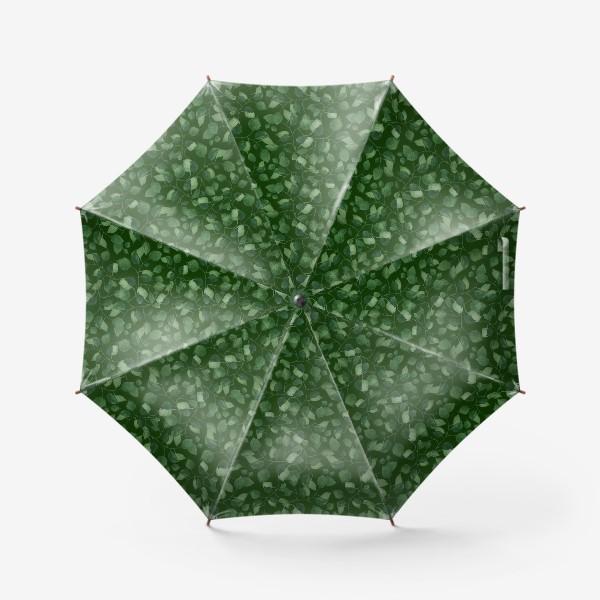 Зонт «Природа растения листочки зелень эко паттерн»
