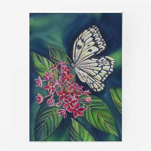 Постер «Бабочка »