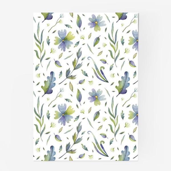 Постер «Полевые цветы и травы»