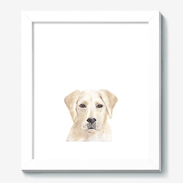 Картина «Собака лабрадор»