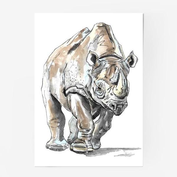 Постер «Африканский носоро»