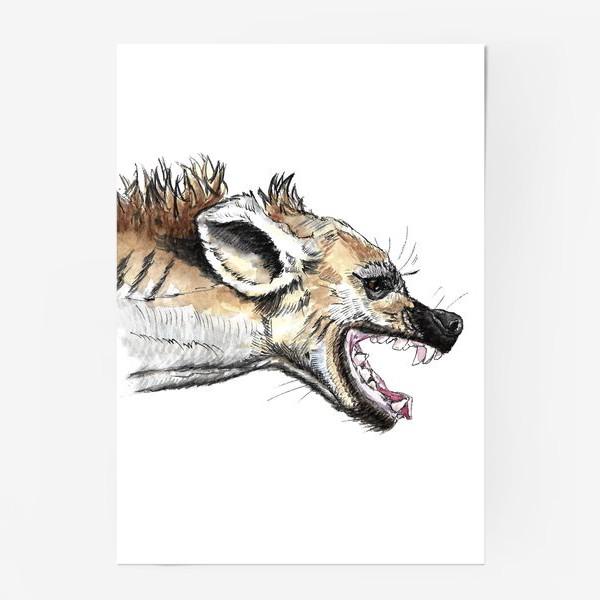 Постер «Африканская гиена»