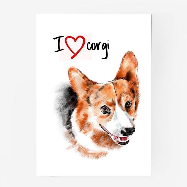 Постер «Я люблю корги. I love corgi»