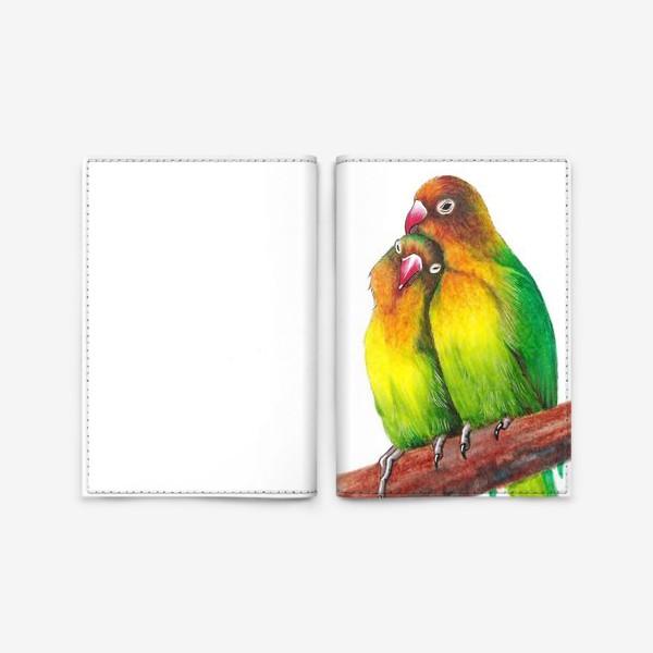 Обложка для паспорта «Попугаи-неразлучники»