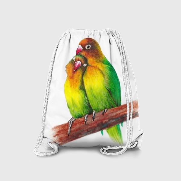 Рюкзак «Попугаи-неразлучники»