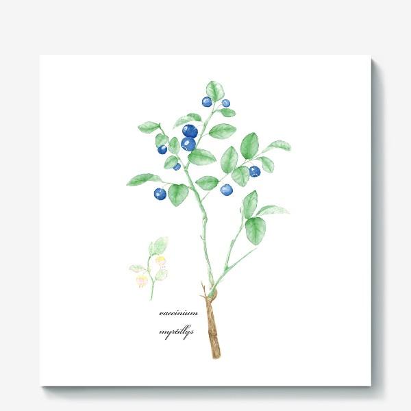 Холст «Черника(vaccinium myrtillis)»