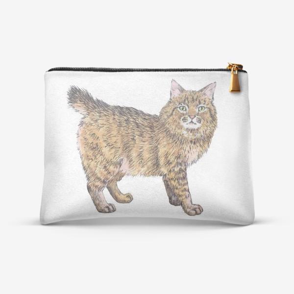 Косметичка «Породистый котик пикси боб»