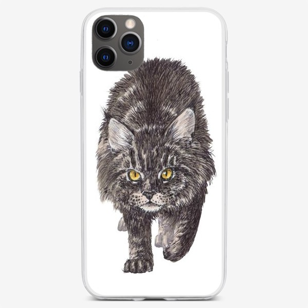 Чехол iPhone «Суровый кот мейн кун»