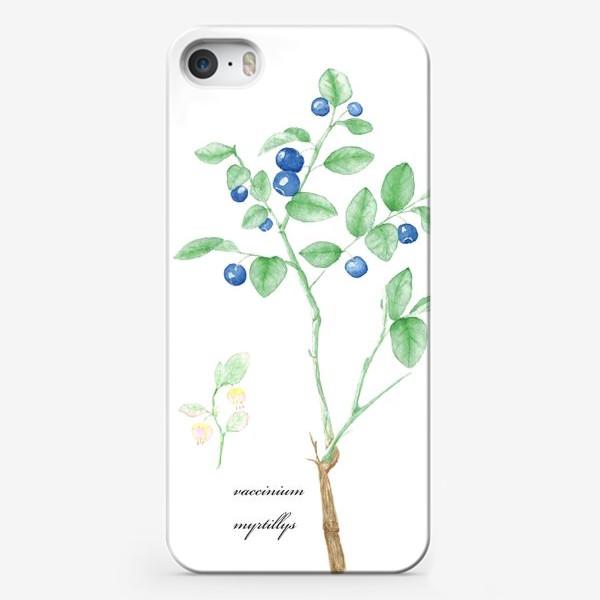 Чехол iPhone «Черника(vaccinium myrtillis)»