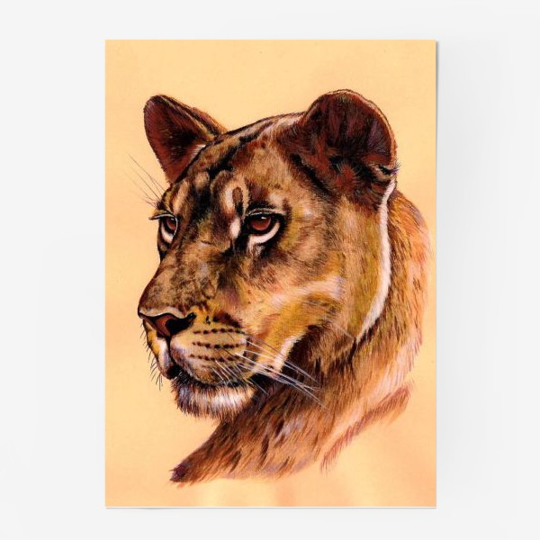 Постер «Львица »