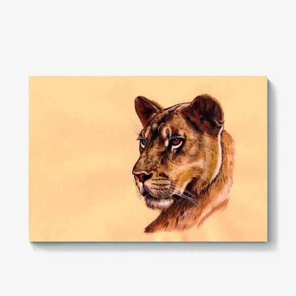 Холст «Львица »
