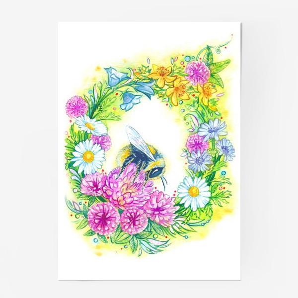 Постер «Клевер, ромашка, колокольчик, зверобой, цикорий и шмель»