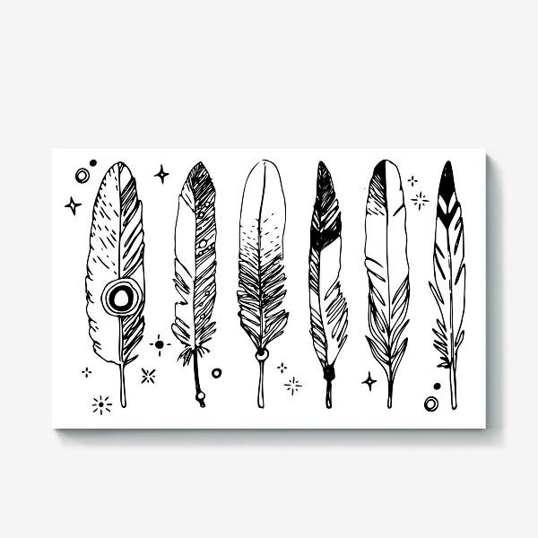 Холст «Набор черно-белых перьев»