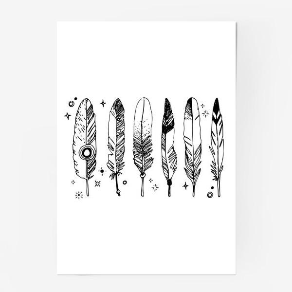 Постер «Набор черно-белых перьев»