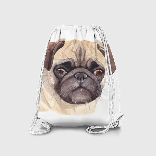 Рюкзак «Грустный мопс»