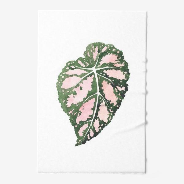 Полотенце «тропический лист, растение, тропики, листья»