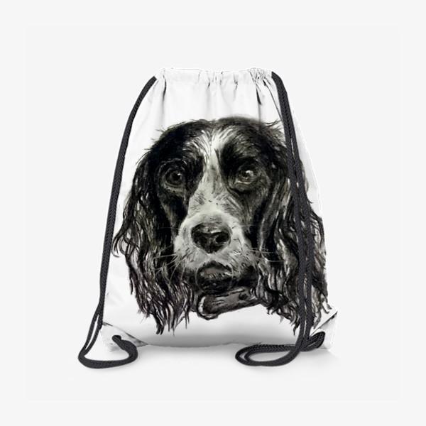 Рюкзак «собака черный спаниель»