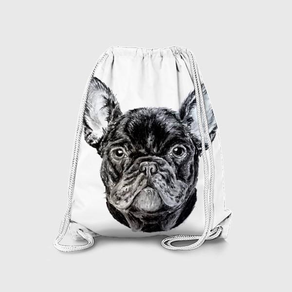 Рюкзак «собака черный французский бульдог»