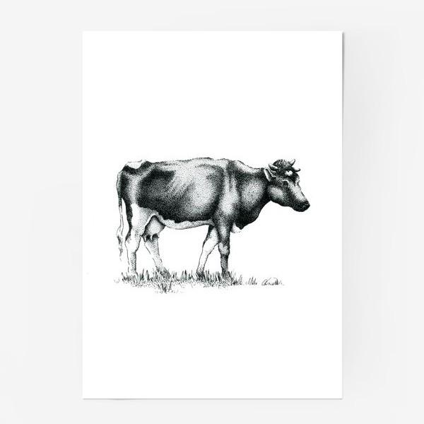 Постер «Корова»