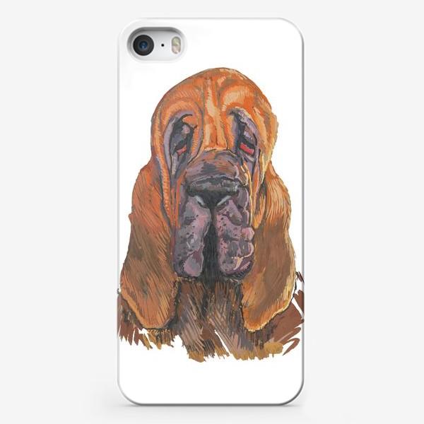 Чехол iPhone «Бладхаунд Бладик»