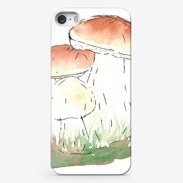 Чехол iPhone «Porcini mushrooms»
