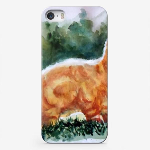Чехол iPhone «Рыжий котя на полянке»