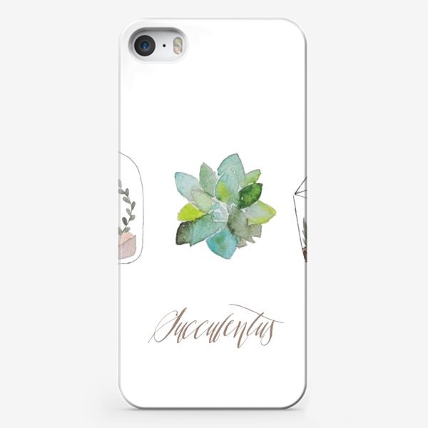 Чехол iPhone «Суккуленты»