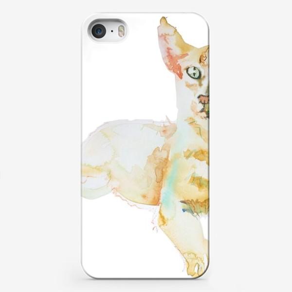 Чехол iPhone «Совершенно Летний Котик»