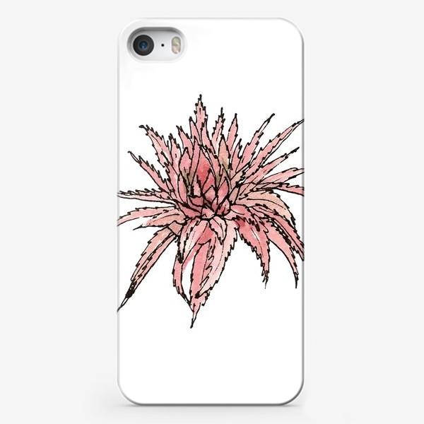 Чехол iPhone «Розовая бромелия»